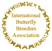 International Butterfly Breeders Association